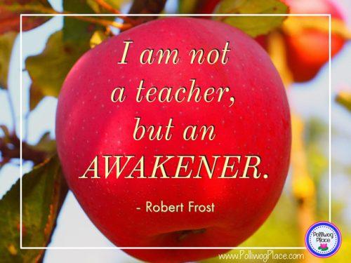 I am not a teacher but an awakener.